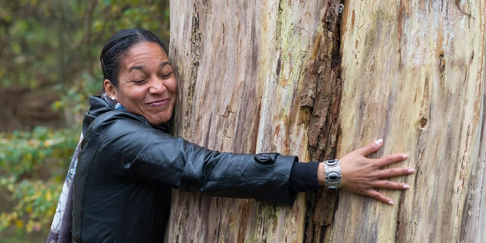 Hugging the tree - Boommeditatie